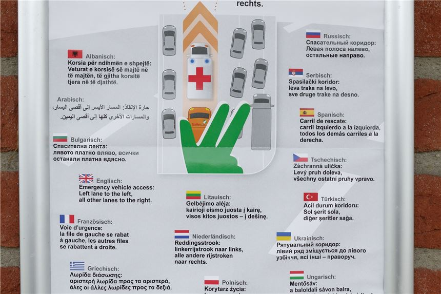 hamster türkisch übersetzung