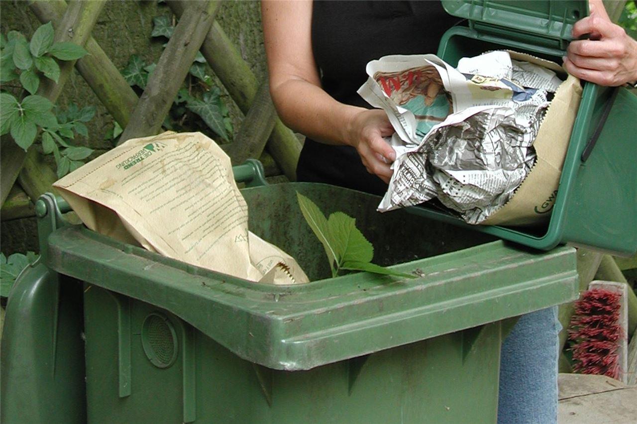 Fleischknochen Und Zitrusschalen Bringen Eigenkompostierer In Gewissensnot
